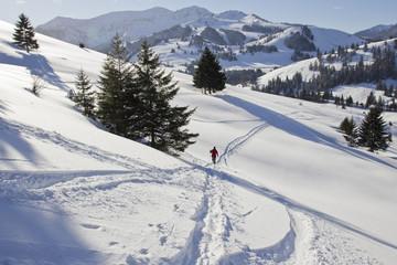 winterwandern mit schneeschuhen in oberbayern am sudelfeld