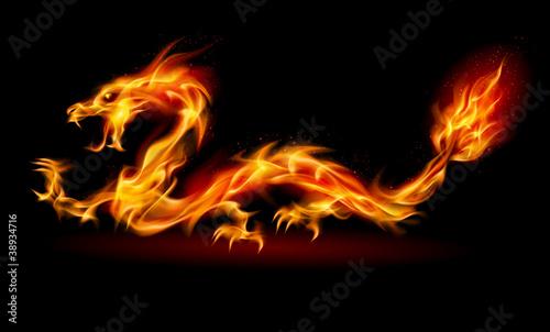 Leinwanddruck Bild Fire Dragon