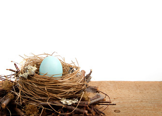 Single blue easter egg in a nest, with a white background