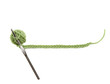 a green ball of yarn with a crochet string for text