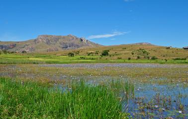 Lac de la réserve d'Anja