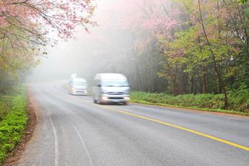 Silver vans driving on road in fog.