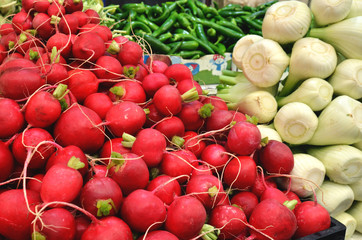 close up of radish and fennel
