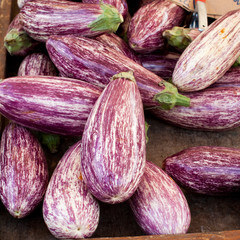 Aubergines at the merket