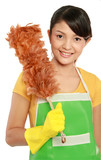woman with cleaning duster poster