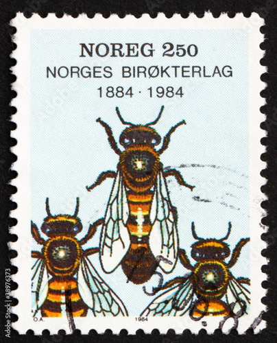 Postage stamp Norway 1984 Worker Bees