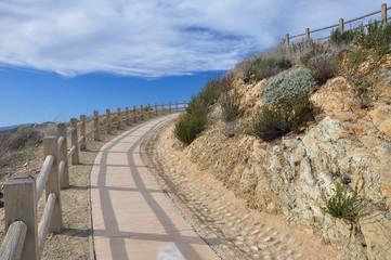 Upward pathway