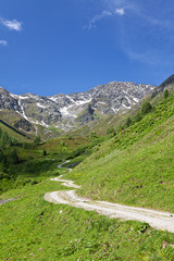 Wanderweg in den Bergen in Tirol