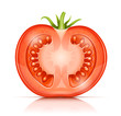 tomato cuted half-in-half vector illustration isolated