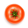 tomato with rootlet top side vector illustration isolated on