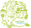 vector green circle with design elements