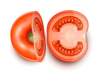 tomato cuted in two part vector illustration isolated on white