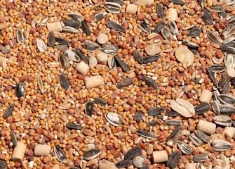 Texture - Bird seed