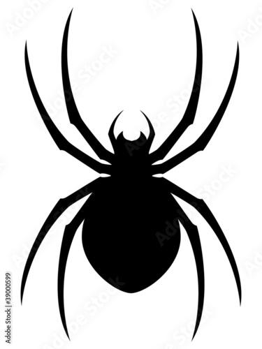 Vector Spider - 39000599