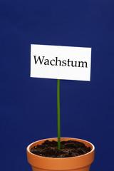 Schild  Wachstum in einem Blumentopf