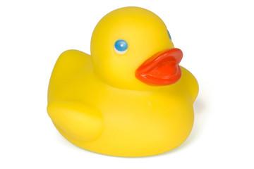 Quitscheente / Rubber Duck