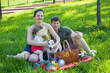 Family on picnic,