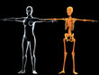 Scheletro e donna raggi X