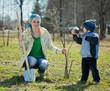 family planting tree