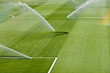 irrigation turf
