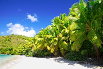 Tropical  beach at summer sunny day