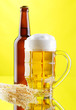 Beer mug and bottles on yellow background