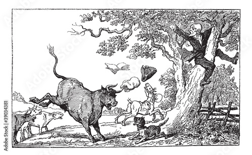 Dr. Syntax chased by a bull vintage engraving.