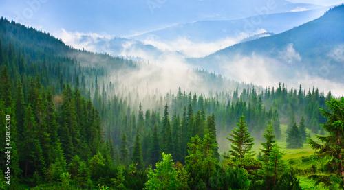 Leinwandbilder,schönheit,hell,umwelt,landschaft