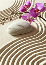 Zen orientalny kwiat
