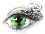 Fototapety eye with birds (series C)
