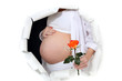 Pregnant woman holding a rose