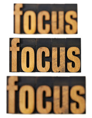 focus concept in wood type
