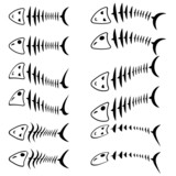 A set of fish skeletons.