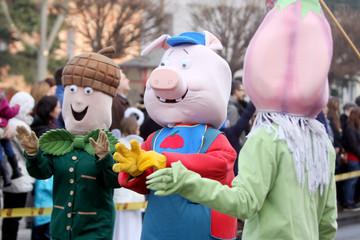 Carnival in Velika Gorica - Topics Vegetables an Animals