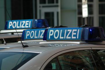 Polizei, Peterwagen, Streifenwagen, Blaulicht, Hamburg