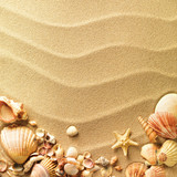 Fototapety sea shells with sand as background