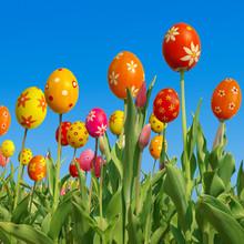 Życzenia wielkanocne, Happy Easter, fotomontaż, tulipany, pisanki