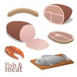 Fish and meat illustration collection