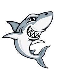 Cartoon shark mascot