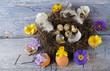 Frohe Ostern / Nest mit Wachteleiern und Blüten
