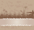 Vintage background with grass