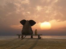Elefant und Hund sitzen auf einem Sommer-Strand