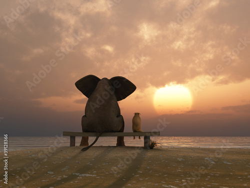 Fototapety, obrazy : elephant and dog sit on a summer beach