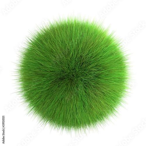 Boule d'herbe sur fond blanc