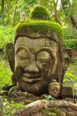 Head of Buddha, Wat U-mong, Chiangmai