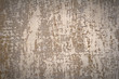 abstract grunge background, with an old plaster wall