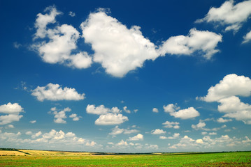 Summer landscape with the beautiful sky
