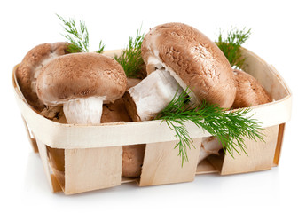 fresh mushrooms in basket with leaves dill isolated on white