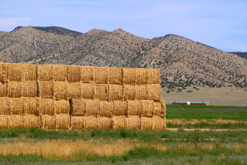 Hay bales in Rural Idaho