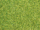 Green artificial grass texture background poster
